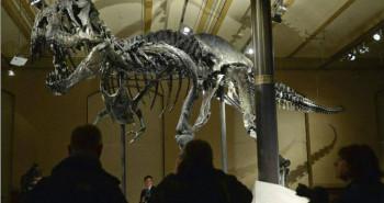 Un esqueleto del tiranosaurius rex se exhibe en Berlín